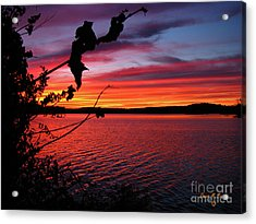 Acrylic Print featuring the photograph Sunset In Pennsylvania by Donna Brown