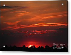 Sunset In The City Acrylic Print by Mariola Bitner