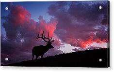 Sunset In The Rockies Acrylic Print