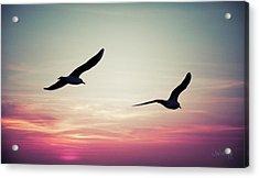 Sunset Acrylic Print by Joseph Westrupp