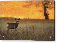 Acrylic Print featuring the photograph Sunset Lover by Kadek Susanto