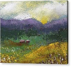 Sunset Meadow Acrylic Print by David Patterson
