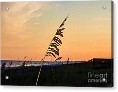 Sunset Memories Acrylic Print