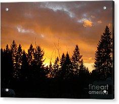 Sunset My Front Yard Acrylic Print by Mary Jo Zorad