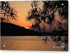 Sunset Acrylic Print by Olivia Narius