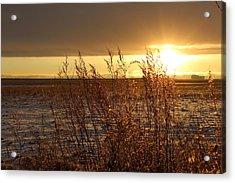 Sunset On Field Acrylic Print