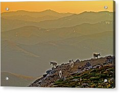 Acrylic Print featuring the photograph Sunset On The Edge by Scott Mahon