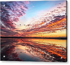Sunset On The Pacific Flyway Acrylic Print