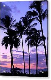 Sunset On The Palms Acrylic Print by Debbie Karnes