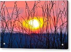 Sunset On The Prairie  Acrylic Print