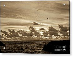 Acrylic Print featuring the photograph Sunset On The Tasman Sea by Yurix Sardinelly