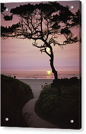 Sunset On The Zen Path Acrylic Print