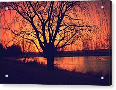 Sunset On Willow Pond Acrylic Print