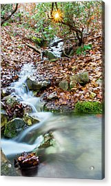 Acrylic Print featuring the photograph Sunset Over An Oak Mountain Stream by Parker Cunningham