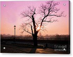 Sunset Over Krakow Acrylic Print by Juli Scalzi