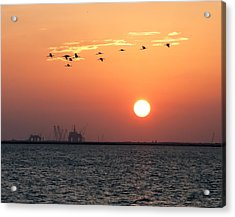 Sunset Over The Bay Acrylic Print