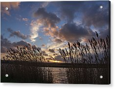 Sunset Over The Exe Acrylic Print