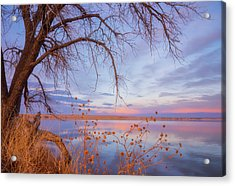Acrylic Print featuring the photograph Sunset Overhang by Darren White