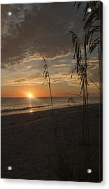 Sunset Portrait Acrylic Print