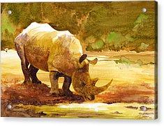 Sunset Rhino Acrylic Print
