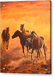 Sunset Run Acrylic Print by Jana Goode