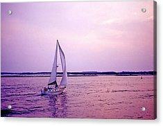 Sunset Sailing Acrylic Print by Bill Jonscher