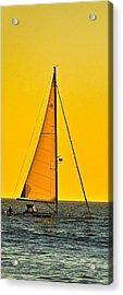 Sunset Sailing Acrylic Print by Liz Vernand