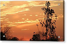 Sunset Series No. 1 Acrylic Print by Christina Martinez