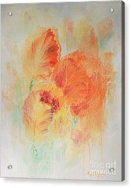 Sunset Shades Acrylic Print