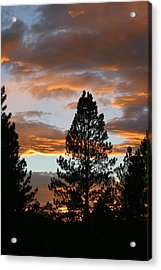 Sunset Silhouette Acrylic Print by Donald Tusa