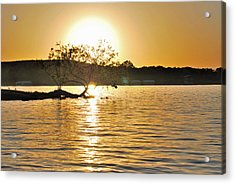 Acrylic Print featuring the photograph Sunset Silhouette by Teresa Blanton