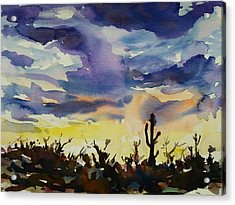 Sunset Sonora Acrylic Print by Xueling Zou