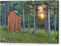 Sunset Through Spruce Acrylic Print by Michele Cornelius