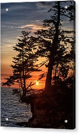 Sunset Through The Trees Acrylic Print