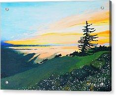 Sunset Acrylic Print by Tiina Rauk