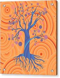 Sunset Tree Acrylic Print by Frank Tschakert