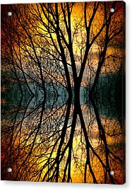 Sunset Tree Silhouette Abstract 3 Acrylic Print by James BO  Insogna