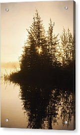 Sunset View Of Trees Reflected In Chena Acrylic Print