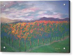 Sunset Vineyard Acrylic Print by Becky Chappell