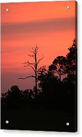 Sunset Acrylic Print by Walt Reece