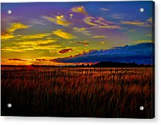 Acrylic Print featuring the photograph Sunset Wheat by Gary Smith