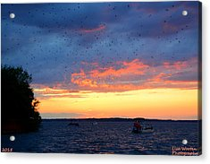 Sunset With The Martin's Acrylic Print by Lisa Wooten