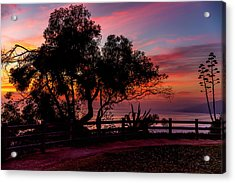 Sunset Silhouettes From Palisades Park Acrylic Print