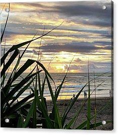 Sunsetsniper Acrylic Print by Arya Swadharma