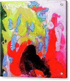 Afterglow #1 Acrylic Print by Joseph Demaree