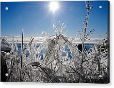Sunshine And Ice Acrylic Print
