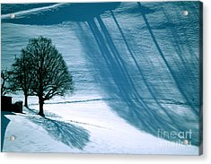 Acrylic Print featuring the photograph Sunshine And Shadows - Winterwonderland by Susanne Van Hulst