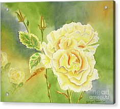Sunshine And Yellow Roses Acrylic Print by Kathryn Duncan