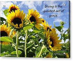 Sunshine Lollipops Grace Acrylic Print by Diane E Berry