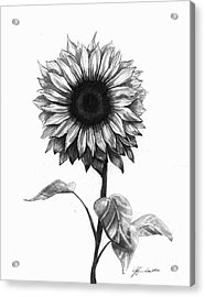 Sunshine Love Acrylic Print